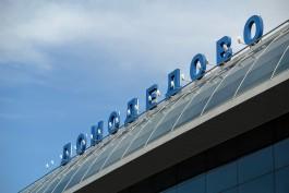 Жительницу Калининграда задержали за кражу из борсетки в аэропорту Домодедово
