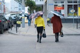 На рабочей неделе в Калининградской области обещают небольшие дожди