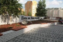 В Макс-Ашманн-парке появится новая спортивно-игровая площадка и пешеходный мостик