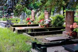 Для нового кладбища под Балтийском выделили 13 гектаров земли