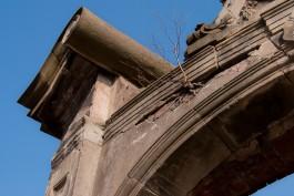 «Живой Кёнигсберг»: Восточная часть Закхайма