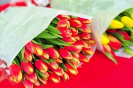 С начала года в Калининградскую область ввезли более 214 тонн цветов