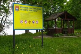 Прокуратура требует от браконьера 300 тысяч рублей за убийство кабанов в Виштынецком парке