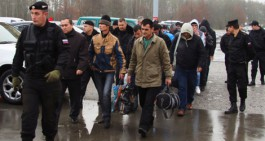Из Калининградской области выдворили на родину десять граждан Узбекистана