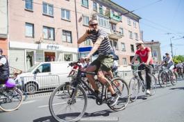 Власти Калининграда разработали экскурсионный веломаршрут протяжённостью 16,5 км