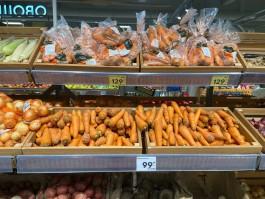 Калининградский фермер: Рыночные цены на овощи завышены — мы продаём морковь по 45-50 рублей