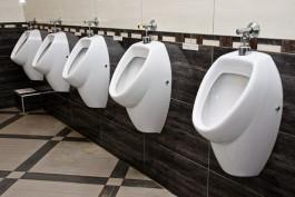 Мэрия: Сегодня вопрос установки общественных туалетов в Калининграде неактуален