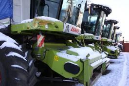 Предприятие Лужкова увеличит посевы гречки на 30%