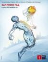 В Калининграде установят рекламные вывески с «аквамэном»