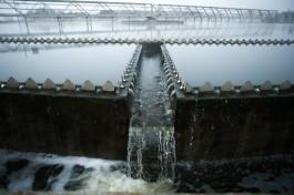 Директор «Водоканала»: Стоки калининградских очистных чище, чем водопроводная вода
