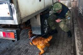 Кочнов: Зарплата рядового сотрудника калининградской таможни — от 20 до 50 тысяч рублей