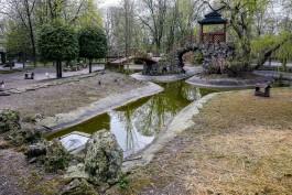 «Это как ночной кошмар»: Соколова рассказала о новых случаях гибели птиц в зоопарке