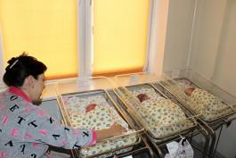 В региональном перинатальном центре родилась первая за два года тройня