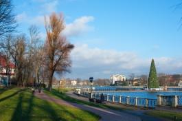Власти Калининграда перенесли ёлку от Дома Советов на Верхнее озеро