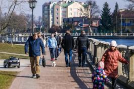 Калининградская область заняла восьмое место среди регионов России по приросту населения