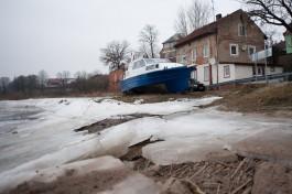 «Паниковать не нужно»: эксперты рассчитывают, что цены на судака в Калининграде снизятся в течение месяца