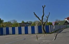 Прокуратура требует запретить строительство семиэтажного апарт-отеля в Зеленоградске