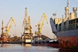 В порту Балтийска задержали 27 тонн тунца из Эквадора
