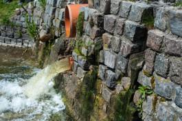 Власти: В парк имени Теодора Кроне поступают неочищенные стоки от четырёх многоквартирных домов