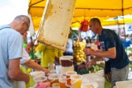 Лужков закупил экспериментальное оборудование для производства мёда в Калининградской области