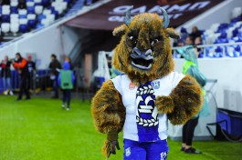 В ФНЛ досрочно завершили сезон, «Балтика» заняла шестое место