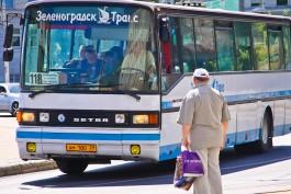 На время проведения кинофестиваля изменят расписание автобусов Светлогорск — Калининград