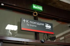 Из-за упавших деревьев в Псковской области задерживается поезд Калининград — Санкт-Петербург