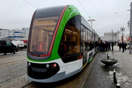 ФАС приостановила торги на поставку новых трамваев и троллейбусов для Калининграда