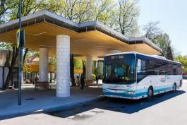 Власти уточнили, как в регионе будут продавать билеты на приморские автобусы с 10 июля