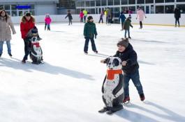 Ледовый каток в Центральном парке Калининграда откроют 1 декабря