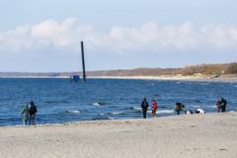 Гидрометцентр: Температура воды в Балтийском море сейчас такая же, как в Евпатории и Сочи