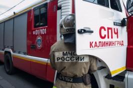 Пожарные локализовали возгорание на территории «Мираторга» в Калининграде