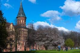 На острове Канта в Калининграде пройдёт трёхдневный фестиваль «Янтарный уикенд»