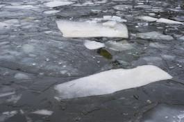 На заливах Калининградской области ожидается разрушение льда
