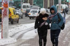Синоптики прогнозируют снег и сильный ветер в Калининградской области