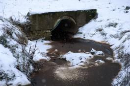 Прокуратура: «Гурьевский водоканал» сбрасывал в Преголю неочищенные стоки