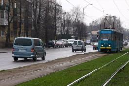 Власти Калининграда не определились со сроками реконструкции аллеи Смелых