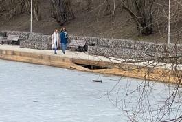 На Нижнем озере в Калининграде разрушается новое деревянное покрытие на пристани