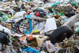 Прокуратура: МП «Чистота» незаконно устроило свалку в Калининграде