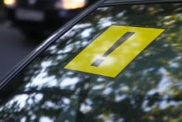 Правительство РФ ввело ограничения для начинающих водителей