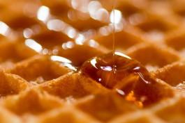 Житель Черняховска украл у пенсионера десять литров мёда и раздал его знакомым