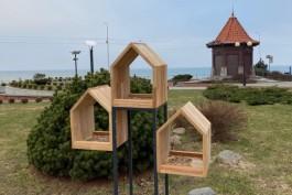 В Зеленоградске установят 30 «дизайнерских» кормушек для птиц