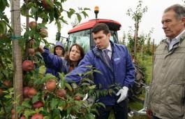Алиханов: Много людей в Калининградской области не знают, куда деваться со своим урожаем