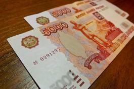 Калининградцы начали получать выплаты на детей в размере десяти тысяч рублей