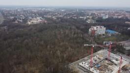 Мэрия расторгла договор аренды лесного массива на улице Донского в Калининграде