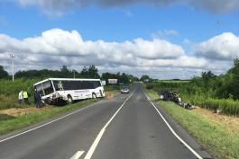 Очевидцы: На светлогорской трассе столкнулись автобус и легковушка, есть погибший