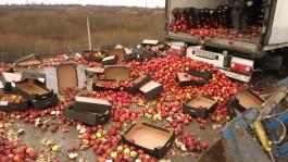 На полигоне в Калининградской области уничтожили 20 тонн польских яблок