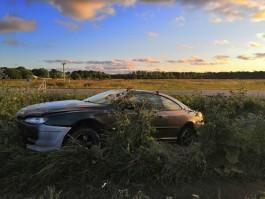 В Багратионовском округе «Пежо» съехал с трассы: пострадали два подростка