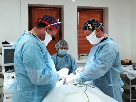 Пластика груди для мам со скидкой до 30%: акция в сети клиник пластической хирургии и косметологии «VIP Clinic»