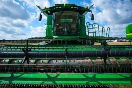 Производство сельхозпродукции в Калининградской области в 2018 году выросло на 13%